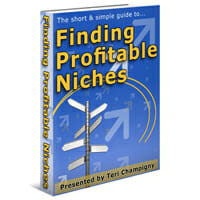 Finding Profitable Niches Image